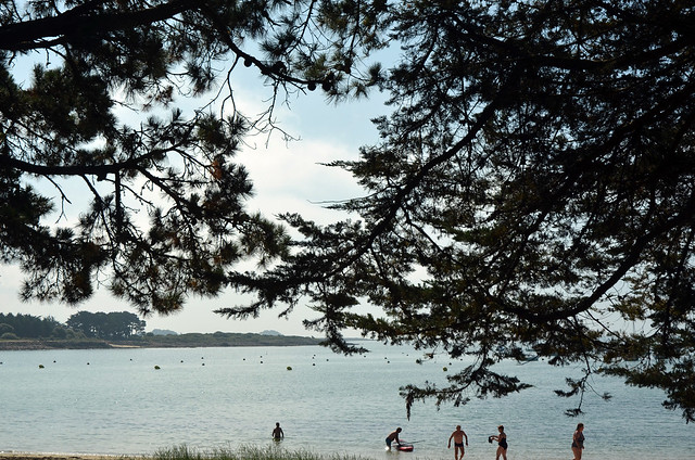 2021.07.01.023 BRETAGNE - Morbihan - CRAC'H - La rivière Saint-Philibert