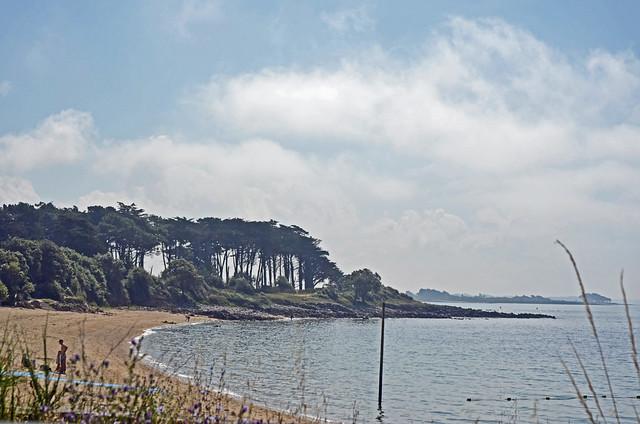 2021.07.01.022 BRETAGNE - Morbihan - CRAC'H - La rivière Saint-Philibert