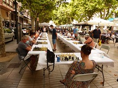 Ajedrez Chess (6)