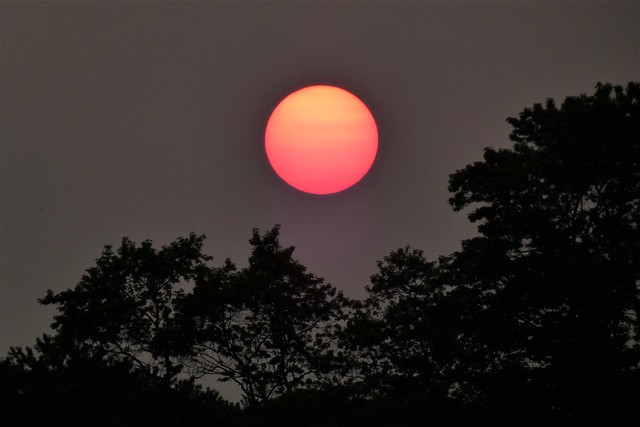 Western Fires Red Sun