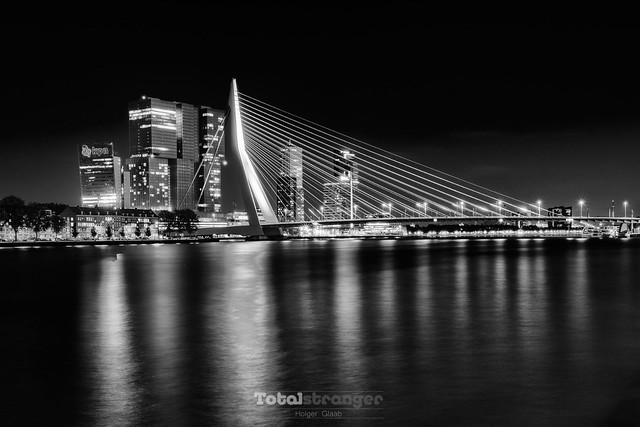 Erasmus Bridge (silver version)