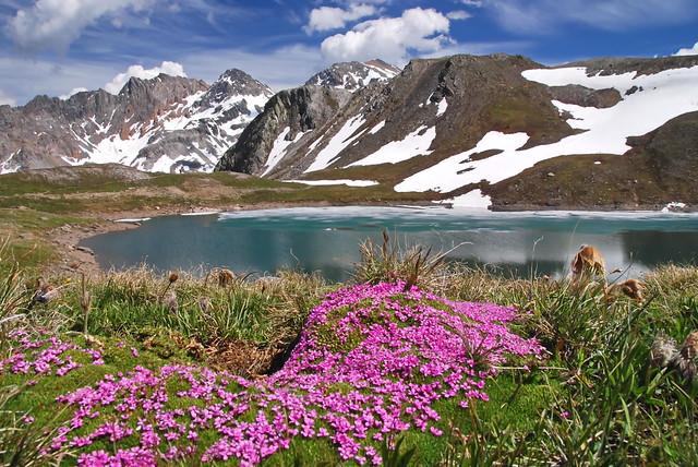 Couleurs du printemps en Savoie.