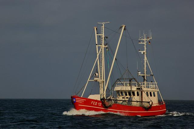FED 12 RUBIN aus Fedderwardersiel       in der Nordsee