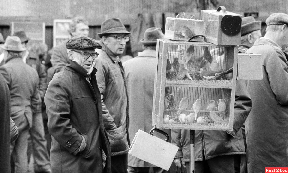 1980-е. Птичий рынок (Таганка)