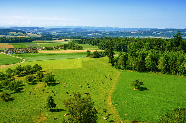 Lanscape of the Canton of Thurgau, Switzerland
