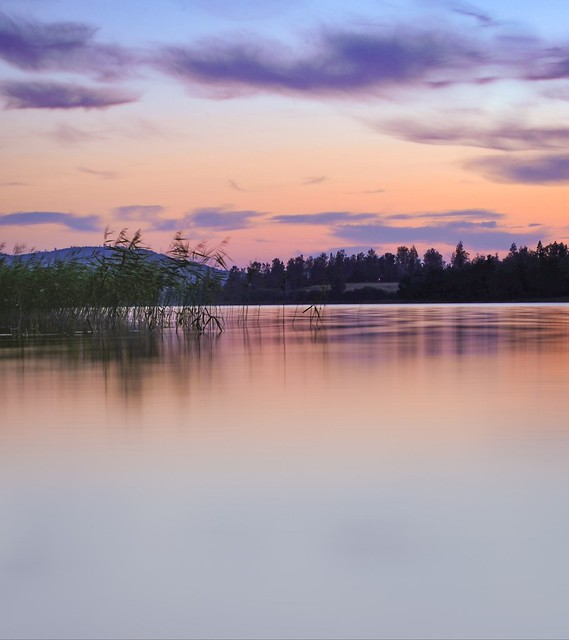 Lake in colors
