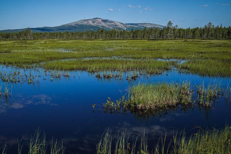 Ylläs behind the swamp