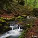 Mullerthal: Trail Beaufort (13)