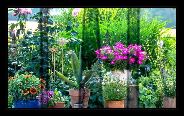 Der Blick durch den Insektenschutz Vorhang in den Garten