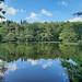 Kiln Pond