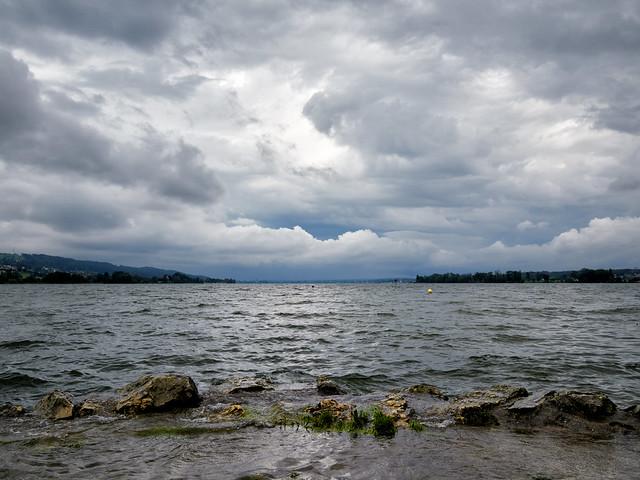 Greifensee - Sommer 2021