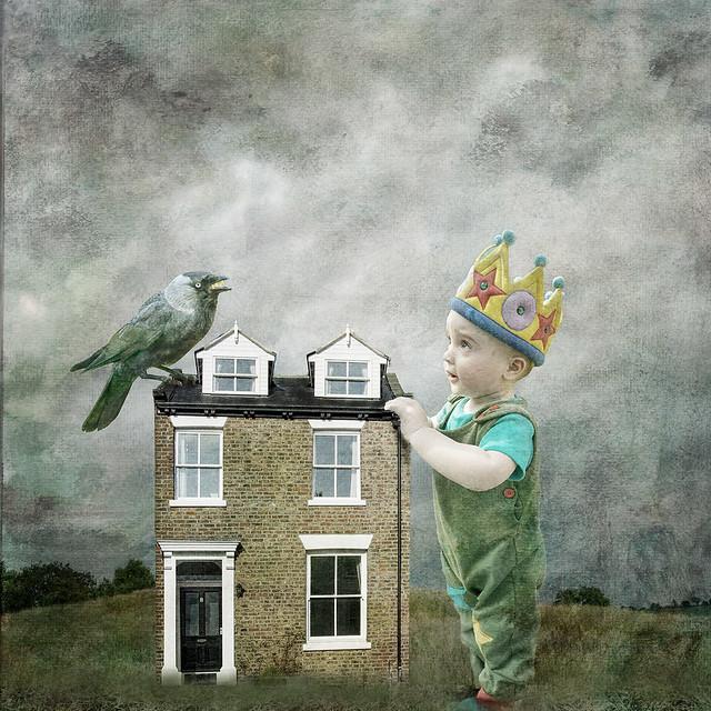 Humphreys Bird House