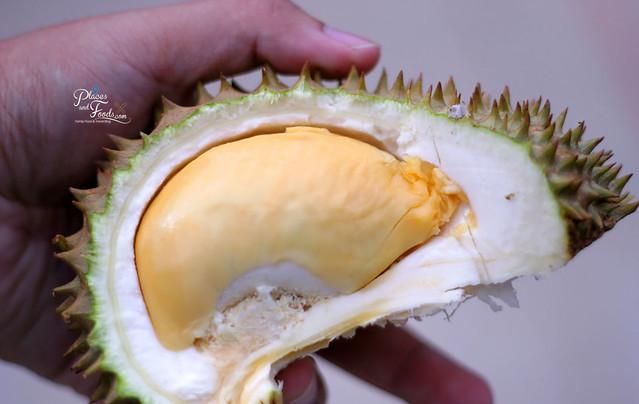 karak red prawn durian