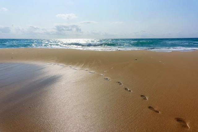 Pin sec beach
