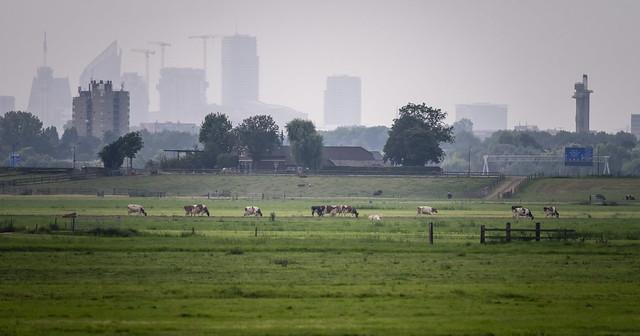 _DSC6023 gezicht op den haag met Neherpark Leidschendam - view on The Hague Leidschendam neherpark