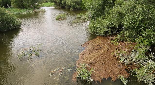 021Jul 20: Morava River Flood 21