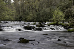 A scenic landscape along Mill Creek
