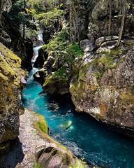 That wateru2026u2026 #avalanchecreek #glaciernationalpark #montana