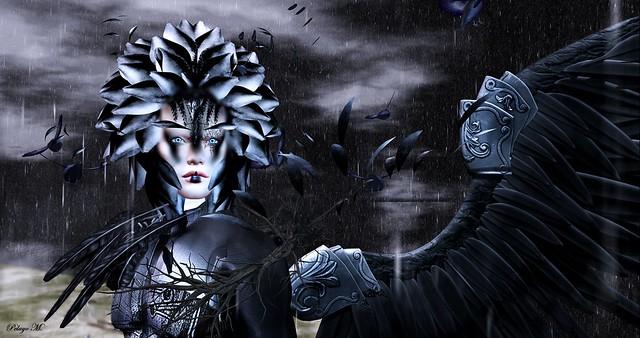 The Raven King - ZIBSKA