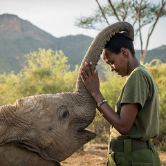 """Photo by @amivitale. I think we could all use some good news right now and so I was glad that my friend and fellow photographer Ami Vitale asked if I could share her new short film """"Shabau201d. Amiu2019s film tells the extraordinary story of Reteti elephant sanct"""