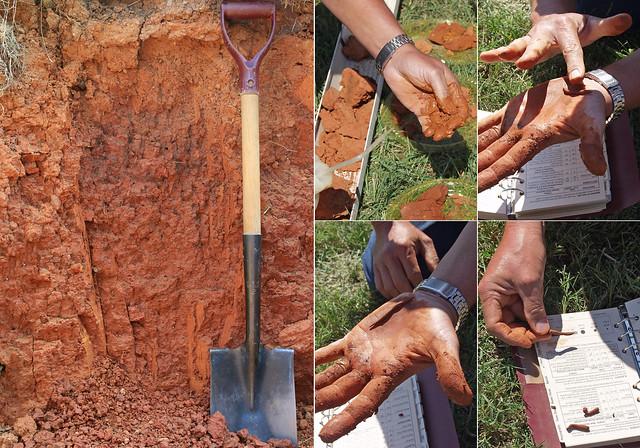 Soil Plasticity (Georgeville soil series)