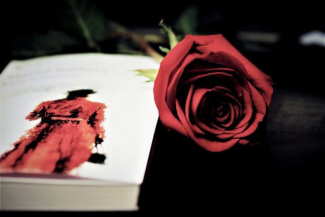 «Una rosa sola»