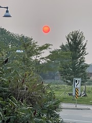 The Planet with the Red Sun Krypton