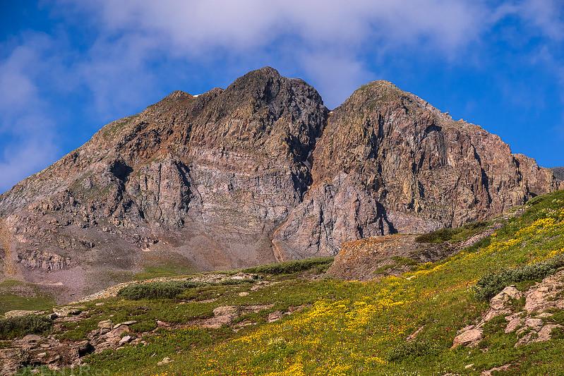 Wildflowers & Mountaineer Peak