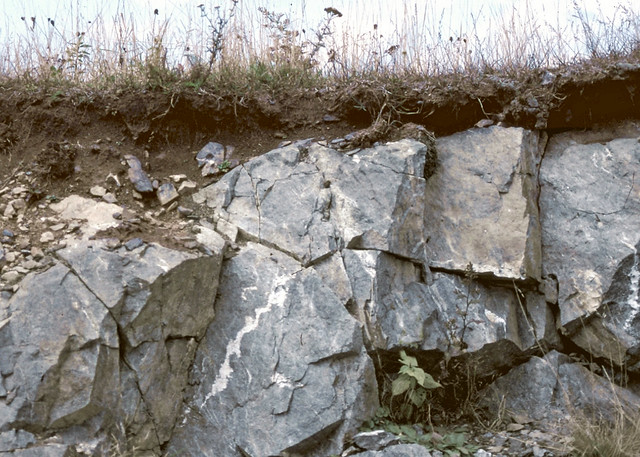 Lithic contact (Craggey soil series)
