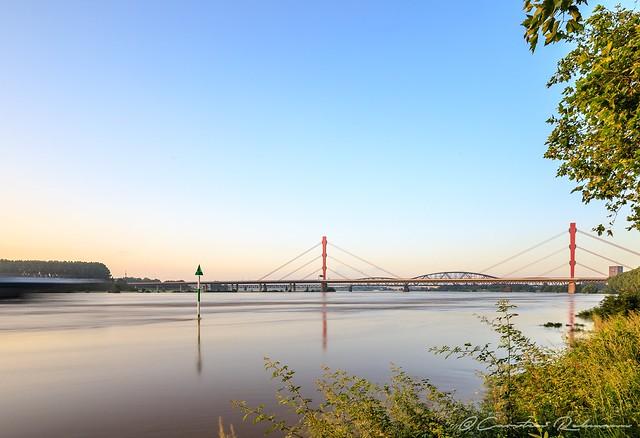 Goldene Stunde am Rhein