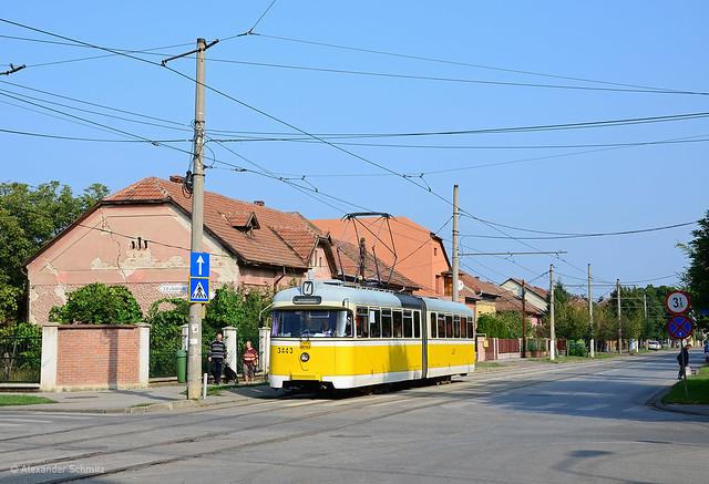 (RO) Timişoara: Hansa GT4b 3443 auf der Linie 7 in Richtung Bulevardul Dâmbovița an der Haltestelle Lidia