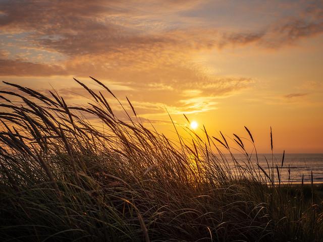 Camperduin sunset
