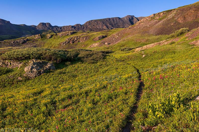Trail Through Spencer Basin