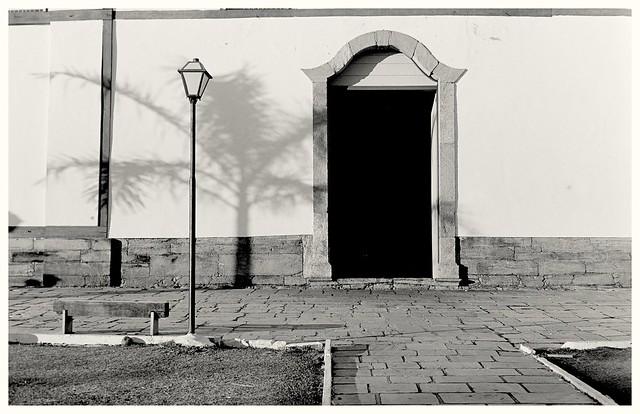 Sombra de palmeira