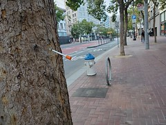 Then there's this... :syringe::deciduous_tree: