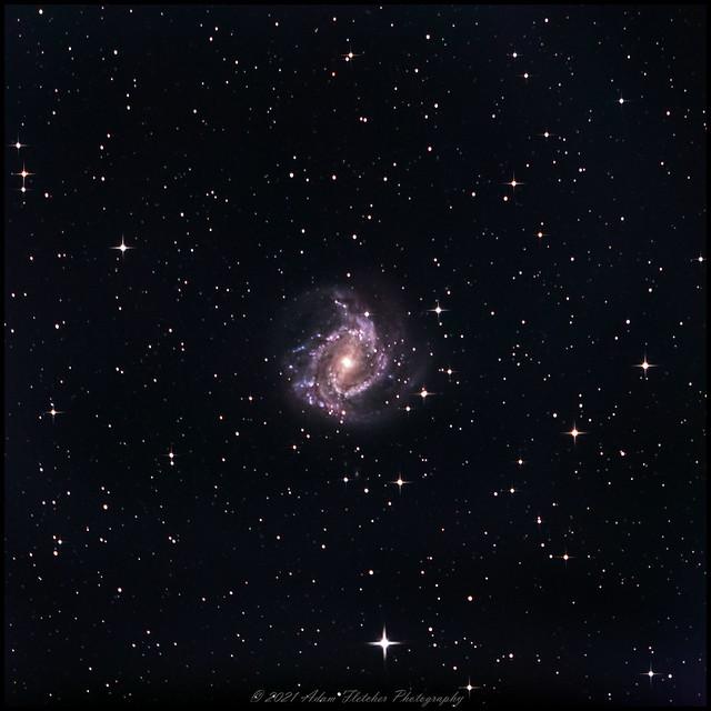 M83 5Dsr Quattro 250
