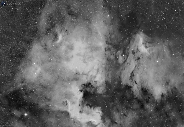 NGC7000 / IC5067