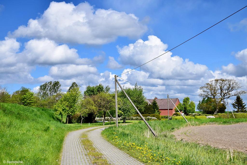 Ländliche Idylle bei Riepe-Wrantepott / Ostfriesland