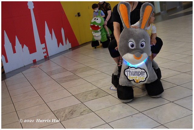 Electrified Bunny - Aberdeen XT9492e
