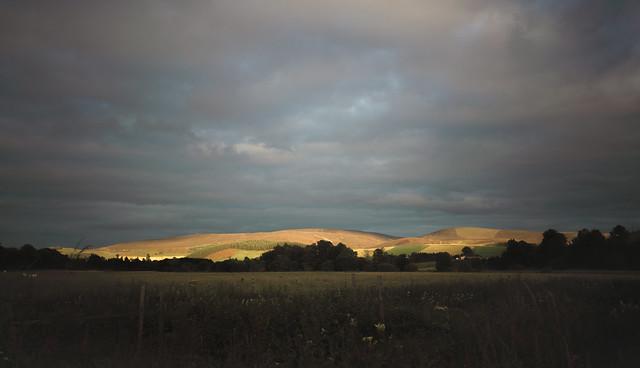 Evening light on the hills