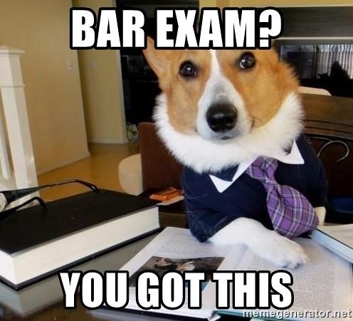 Law Dawg Meme: Bar Exam? You Got This