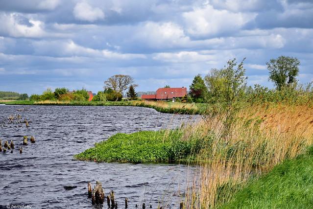 Landschaft bei Riepe-Wrantepott / Ostfriesland