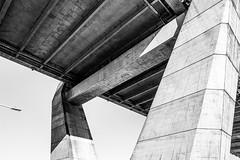 Anzac Bridge Supports in Monochrome