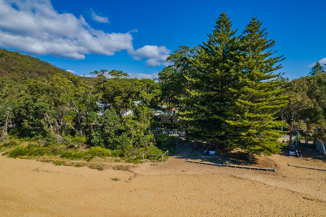 Morning aerial views at the beach with Norfolk Pines and Gum Trees