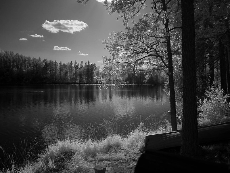 Infrared of the day 58