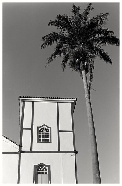 Igreja com palmeira