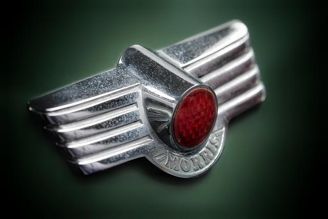 Moggie Minor rear badge