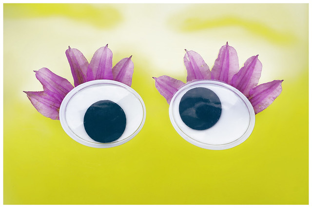 Pink false eyelashes. For a twisted view into the sky.