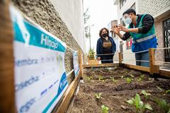 MML recupera espacios públicos en Pasaje Ruiz y jirón Zubiaga en Barrios Altos 014
