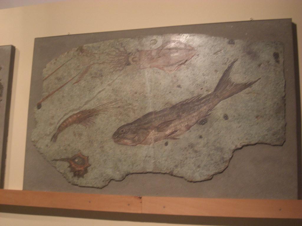 Mosaic with Marine Life